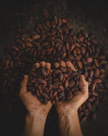 つまりショコラティエが、カカオ豆の産地からこだわり、その魅力を最大限にいかせるように...と時間と手間をかけて作り上げているチョコレート♪ちょっとした気温の変化などにも気を使うとても大変な作業ですが、その分、新鮮な状態のチョコレートを楽しませてくれるんですよ。