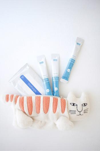こちらはダイソーのマウスウオッシュと歯磨きシートです。 過去の震災では、水不足で歯磨きができずに、虫歯になってしまったり、肺炎になってしまった方が多くいらっしゃったのだそうです。  また、家族などに向けてメッセージを残すための油性ペンや、様々な用途に使えるトイレットペーパー、布のガムテープ、新聞紙もあると便利だそうです。  他にも生理用品や介護用品など、必要に応じてリストに加えて下さいね。