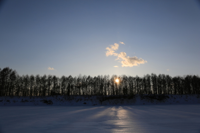 初候:乃東生(なつかれくさしょうず)12/22頃 ほかの草木は枯れる中で、乃東(だいとう)=夏枯草が芽吹き始めるころ。 ※乃東も夏枯草も「靫草(うつぼぐさ)」の異名です。 次候:麋角解(さわしかつのおつる)12/27頃 「麋(さわしか)」(大鹿またはヘラジカ)が古い角を落とし、新しい角に生え変わるころ。 末候:雪下出麦(ゆきわたりてむぎいずる)1/1頃 一面雪が積もっている地面の下で、麦が芽を出すころ。