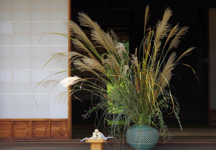 9月の中頃、旧暦の8月15日は「中秋の名月」です。この十五夜のお月見にはススキやお団子をお供えしますが、日本人がお月見を楽しむようになったのは江戸時代のころから。秋の収穫を祝う行事として、収穫物をお月様にお供えしたそうです。十五夜の代表的なお供え物は、米粉で作った月見団子、神様の依代の役割を持つススキ、里芋やブドウなど旬の収穫物です。お供え物を飾るお月見台は、床の間やチェストの上、小さなテーブルでも◎。綺麗なお月様を眺めながら、素敵なひとときを過ごしてはいかがでしょう。