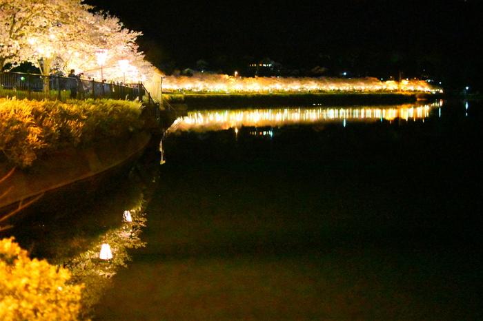 桜が見頃を迎える時期になると、「上野公園さくらまつり」が開催され、大勢の花見客で賑わいます。特に、上野池畔の夜桜は日本随一の美しさとも称されています。
