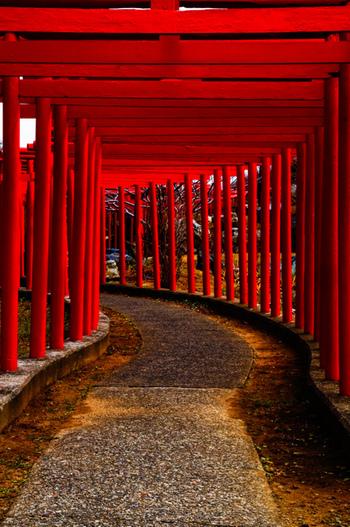 幾重にも鳥居が連なり、厳かな雰囲気が漂っています。千本鳥居というと京都の伏見稲荷神社が有名ですが、こちらは青森県つがる市にある「高山稲荷神社」。