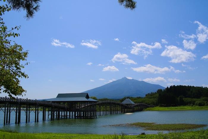 次は鶴田町にある、日本一長い木の橋「鶴の舞橋」。鶴が空を飛び舞う姿に見えることからその名前がついたとされており、背後にある雄大な岩木山と併せて、とても雄大な景観です。女優・吉永小百合さんが出演するJR東日本のCMの舞台となっており、全国から観光客が訪れているんですよ。