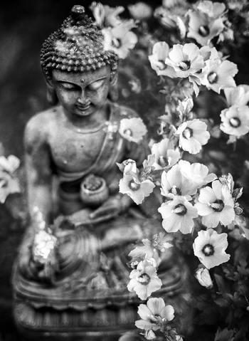 あの仏陀も苦行は意味がない、と自ら体験してから気づいたように、現代では「苦しみを我慢しても仕方がない」と解釈されています。ちょうど金が焼けば焼くほど純度が増すように、人も一生懸命何かに取り組むことで磨かれていくものです。