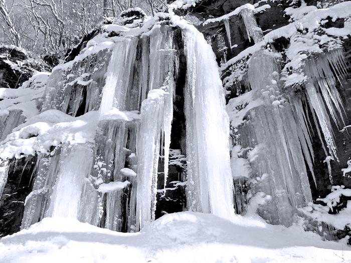 奥入瀬渓流には大小さまざまな滝があり、それぞれが観光スポットとなっていますが、冬になるとそれらの滝も見事に凍りつきます。他の季節であれば滝の落ちる音が響き渡りますが、冬はしんと静か。冬だけ楽しめる氷瀑は、ぜひ写真に収めたいもの。