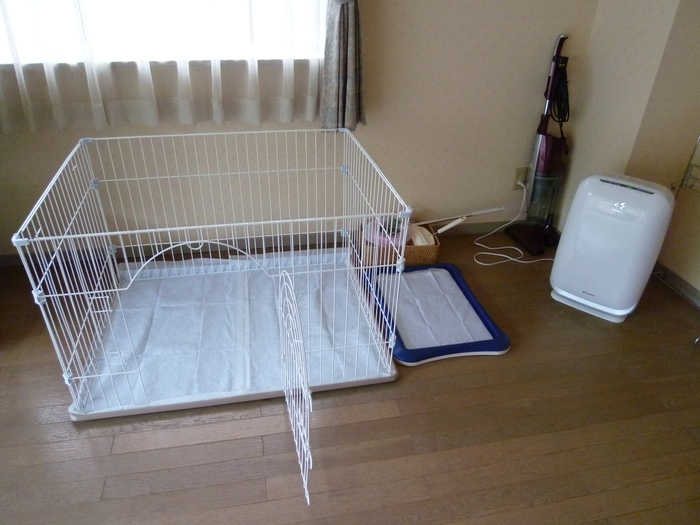 また、ペット同伴OKの階層・客室も設けているので、家族の一員のようにわんちゃん・猫ちゃんと一緒に泊まれるのはペットを飼う方々には嬉しいですね。