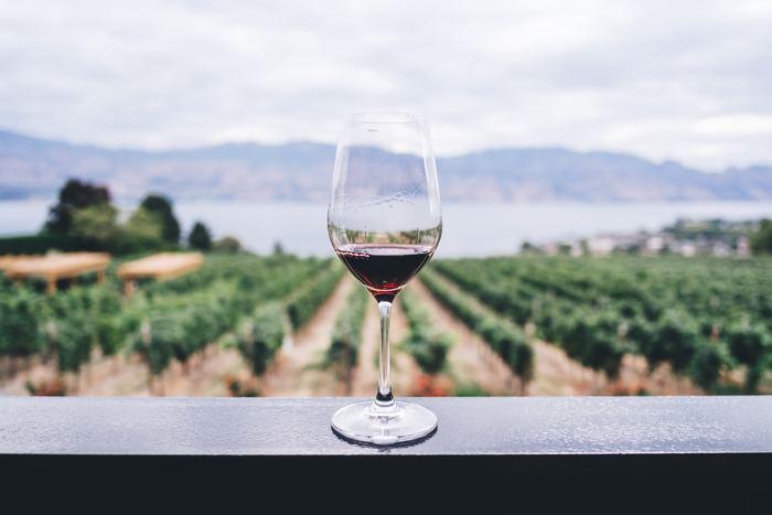 チーズにワインを合わせるときは、「産地を一緒にする」という方法があります。エポワスならブルゴーニュ産の赤ワインがおすすめです。