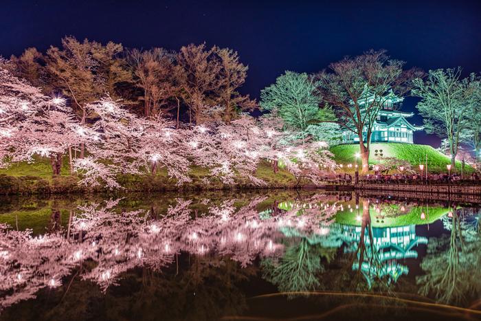 高田公園での夜桜の美しさは傑出しており「日本夜景遺産 ライトアップ夜景遺産」に登録されています。漆黒の夜闇、ライトを浴びて輝く城址と桜、ゆらゆらと揺らめくぼんぼりの灯りを、お堀の水面が鏡のように映し出す様は、この世のものとは思えないほど神秘的です。