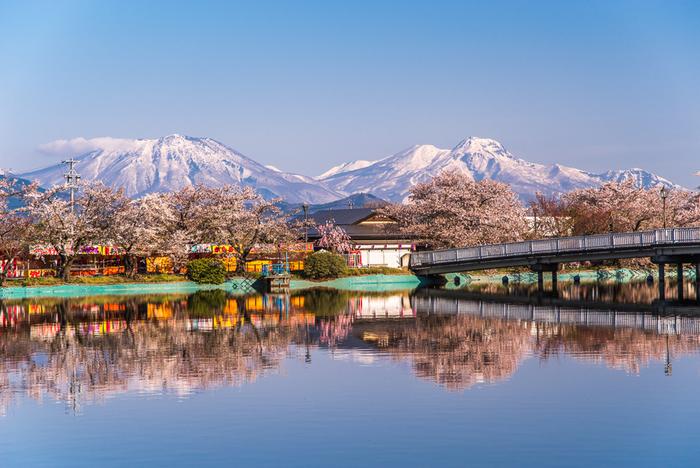 臥竜山麓に位置する臥竜山公園は、日本さくら名所100選のほか、日本の名松100選に選定されている長野県を代表する景勝地です。