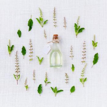 その後、2~3時間の香りは「ミドルノート」と呼ばれます。しっとりと落ち着いた香りで、ミドルノートの香りをポイントにコロンを選ぶと良いといわれています。