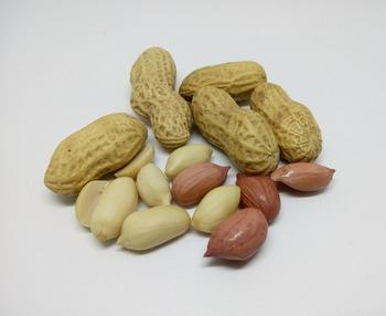 材料はピーナッツがあれば、とりあえずはOK。ピーナッツそのものの油分で素朴な甘さの100%ピーナッツバターができます。作る時のポイントは、軽く煎ること。油が出て馴染みやすくなります。
