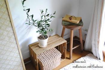 太陽の光が大好きなオリーブの木は、窓辺のスペースを飾る植物としておすすめ。小さいサイズのものなら、出窓などのスペースにもすっきりと収まります。