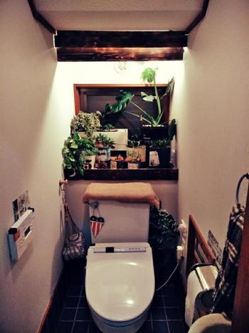 これでもかと植物を配したトイレは、入るたびに緑が癒してくれそう。植物たちと相性ぴったりな濃いめのブラウンがマニッシュな雰囲気に見せてくれていますね。