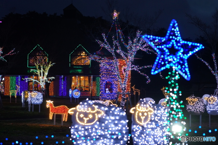 雫石町にある小岩井農場は、冬になると「小岩井ウィンターイルミネーション」が開幕し、場内にたくさんのイルミネーションが冬の夜空を照らします。使われる電球の数は東北最大級。子どもから大人まで楽しめるスポットです。