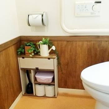 こちらもスリムタイプの収納棚。グリーンをちょこっと載せて飾り棚として合わせ使いするのも彩りが出て素敵ですね。