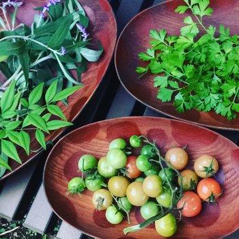 ▲赤いベンガラの大皿は、盛った素材の色を美しく見せてくれるスグレモノ