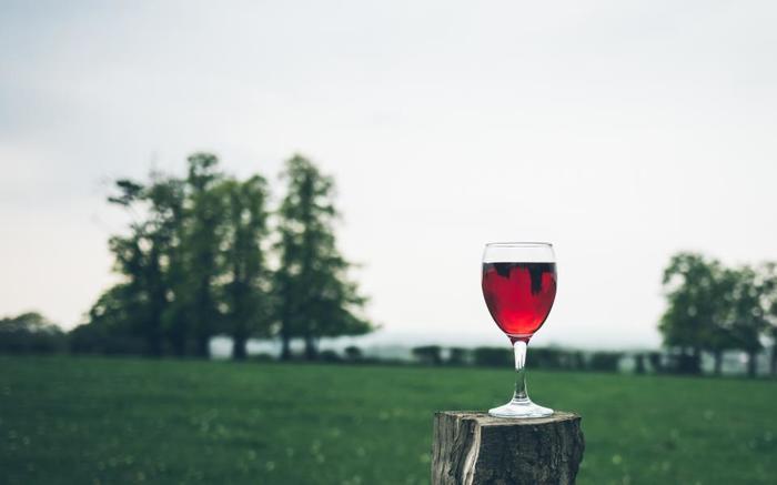 ワインにもよく合います♪お酒といただくときは小ぶりなスモーブローがおすすめ。