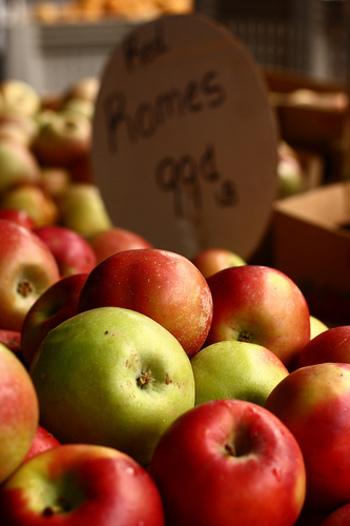 りんごを使ったスイーツといえば・・・アップルパイ!だけだと思っていませんか?いえいえ、世界にはアップルパイ以外のスイーツもたくさんあるのです。
