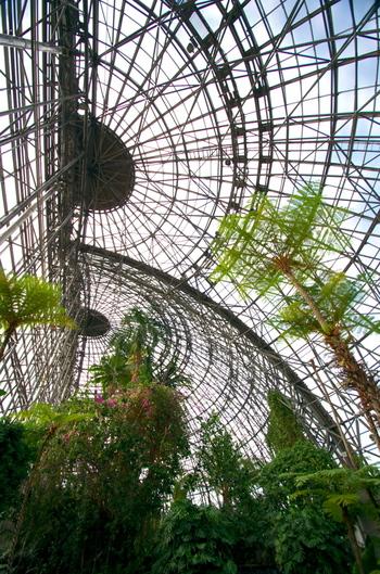 広いドーム内部は、冬であることを忘れるようなワイルドな亜熱帯植物が迎えてくれます。コンサートや多肉植物の即売会など、季節のイベントも開催されているので下記ホームページをチェックしてみましょう。