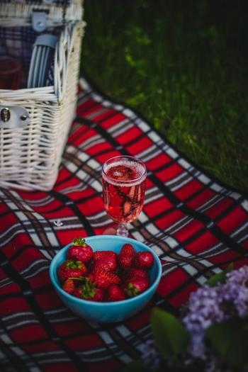 爽やかな緑に映える赤。せっかくのピクニックは、食べ物はもちろんカラーコーディネートによる雰囲気までも合わせて楽しみたいですね。