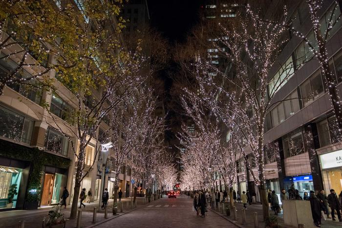 冬の夜を美しく輝かせる「丸の内イルミネーション」は、2月18日まで開催中。イルミネーション点灯エリアは、東京駅周辺と、iiyo!!、新丸ビル、丸ビル、丸の内ブリックスクエアを繋ぐ丸の内仲通りと広範囲なので、ゆっくり散歩しましょう。イルミネーションに使っている電気は、100%太陽光や風力によるグリーン電力の地球にやさしいイルミネーションです。