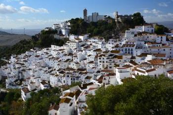 アンダルシア地方独特の「白い村」は、癒される温かさに満ちています。どの家も白い壁で作られているのは、強い日差しを反射させて家を涼しくさせるため。この「白い村」はいくつもあるのですが、その中で観光地として最も知られているのが、ミハスです。また、素朴な美しさがあるフリヒリアナも、人気があります。山の斜面に位置するカサレスは、交通の不便さから観光客が比較的少ない穴場ともいえます。どの村も、石畳や案内板のタイルなど細かな装飾まで可愛らしく、短時間の散策でも満喫できます。