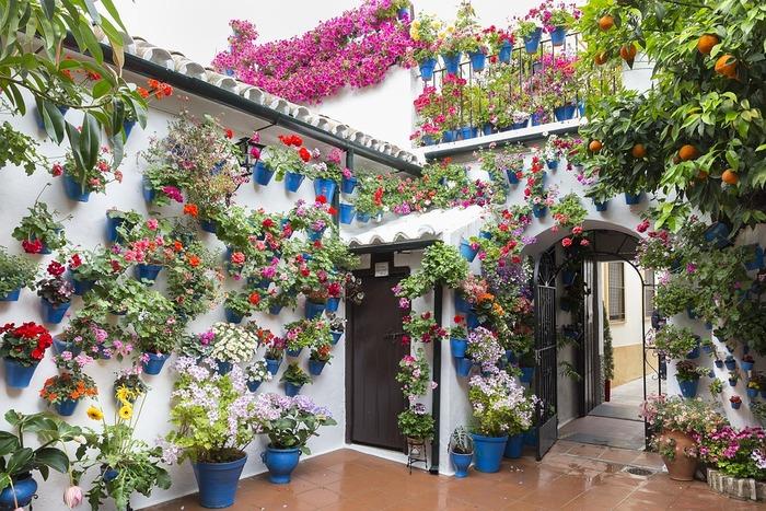 コルドバでは毎年5月、世界無形文化遺産にも登録されている「パティオ祭り」が開かれます。中庭を鮮やかな花やグリーンで飾り、その美しさを競うというもの。白い壁をぎっしり埋め尽くすようにプランターが飾られ、スペインらしい明るさと華やかさが旧市街にあふれます。