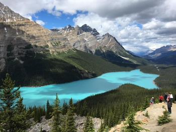 最後にご紹介するのは、ペイトレイク。近くから湖の青さを見るのも素敵ですが、他の湖と違って展望台から鑑賞できるのがこの湖の特徴。展望台から湖を見ると、ご覧のようにキツネの姿に見える何ともキュートなスポットなんですよ。