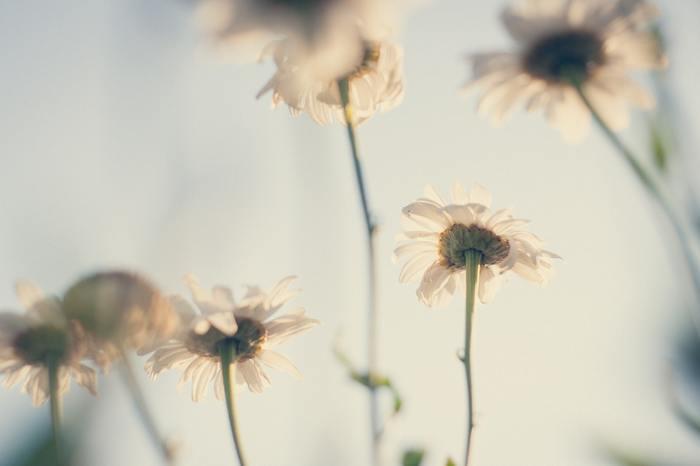 『沈黙』があなたをより綺麗に。コミュニケーション力も高まる沈黙上手になるためのヒント