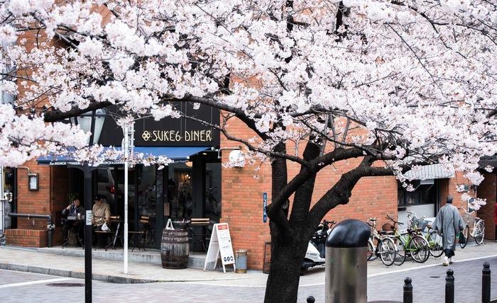 隅田川のほとりに佇む「SUKE6 DINER」。オープンしてから約3年。すでに隅田川沿いの顔になりつつあり、桜を見ながらお食事やお酒を楽しんだり、花火やスカイツリーなど、景観も見所満載なお店です。