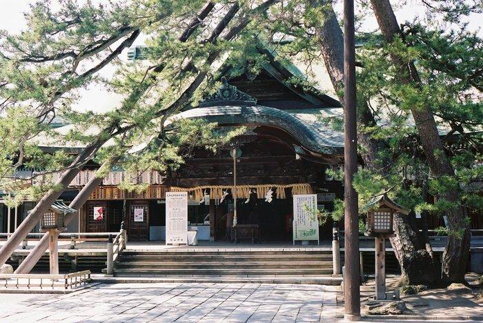 新潟の総鎮守として歴史ある神社。ご祭神の「菊理媛大神(くくりひめのおおかみ)」は、糸をくくり整えるように男女の仲を取り持つとされ「縁結びの神様」として有名です。近年、パワースポットとしても注目されています。