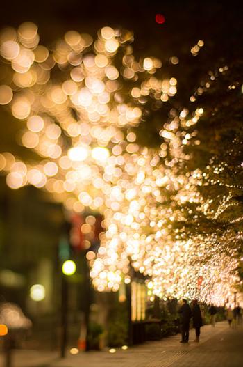 シャンパンゴールドに輝くエコロジーなLEDライト約98万球が輝く様子は、まさに圧巻の一言。カメラを持って出かけましょう。