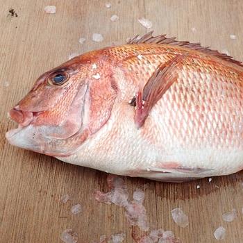 魚料理は新鮮さが肝心!魚は1日経つと酸化して臭みが出るため、できるだけ買ったその日に調理してしまいましょう。