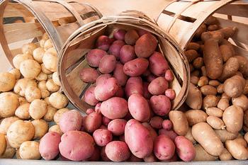 イモ類に含まれる炭水化物は、精製されていないので体にいい成分がそのまま。さらに糖質やビタミンC、食物繊維の摂取にもおすすめです。