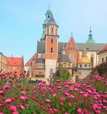 城内に入ると、様々な様式の建物を見ることができます。そこかしこに花が咲き、散策する場所としても素敵です。