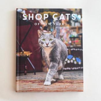 看板犬ならぬ看板猫がたくさん!オシャレでほっこりさせられる素敵な写真集。マンハッタンのオシャレな雰囲気とクールな猫の表情がたまらない一冊。