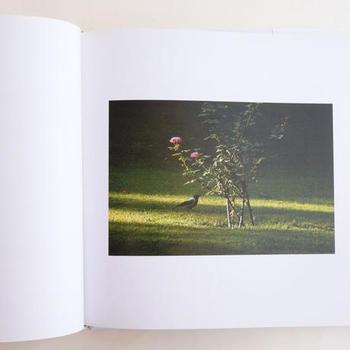 日本のカラスとは違う2トーンのカラスはイラン特有のもの。優しい時間が流れる写真集を眺めながら、オリジナルストーリーを作ってみるのもリフレッシュになりそうですね。