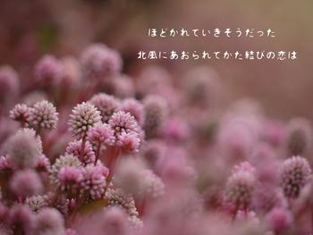 和歌を学びたいなら短歌がいいでしょう。五七五七七の五句、三十一音を基本とする古来から伝わる日本文化です。  日本の四季や、和の心、言葉のリズムを感じながら、ひとつの歌を創り上げていく楽しみを身に着けてみませんか?