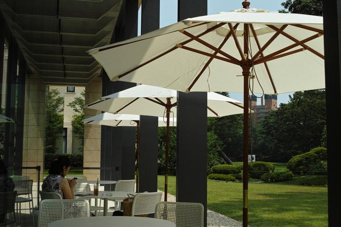 館内新館には、展覧会チケットを持っている方のみ利用できる「cafe TEIEN」もあります。天気の良い日は、庭を眺めつつテラス席で一休みしましょう。
