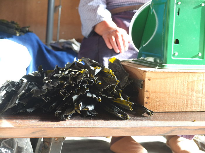 「ナナクラ昆布」は北海道日高沖で獲れる日高昆布です。日高昆布は「出汁によし食べるによし」の万能昆布と言われています。お出汁は磯の香りを感じ、また、合わせた素材の味を邪魔することなく引き立ててくれます。食べたときには、肉厚で口当たりもよく、ほどよい食感と塩味がポイントです。特に煮物にしたときには味がよく染みて食べ応えのある一品に仕上がります。
