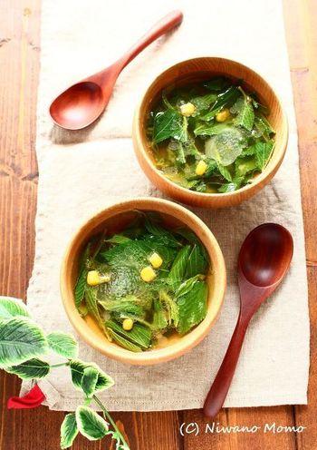 モロヘイヤは栄養価が豊富でクレオパトラも好んで食べていたというエジプト原産のお野菜。味噌バター仕立てのスープでグッと食べやすくなります。