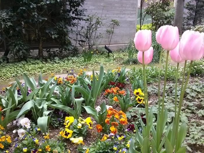 こちらでは、いわさきさん自身が慈しんで育てた植物が楽しめる「ちひろの庭」や、リアルに復元されたアトリエなど、五感で世界観に浸ることができます。