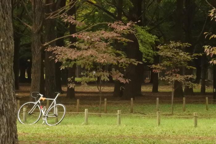"""陽射しぽかぽか暖かな春は、ピクニック気分で""""パンランチ""""を楽しもうin代々木公園"""