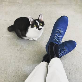 鮮やかな青いスニーカーには縦ストライプの靴下を。縦のラインのおかげですっきりクールに見えます。