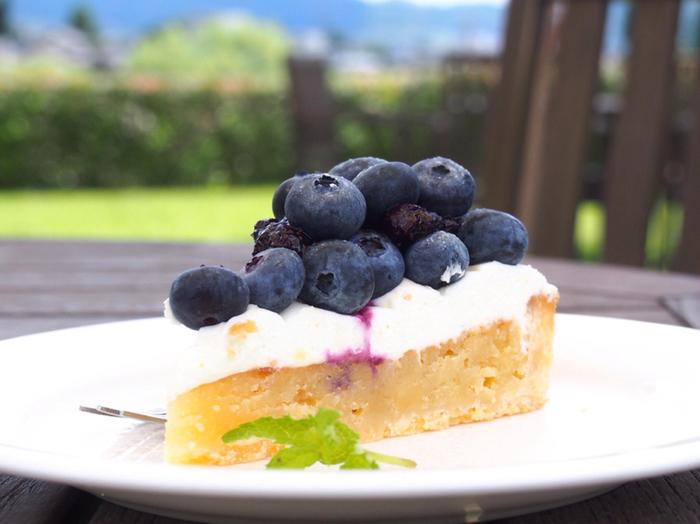お天気がいい暖かい日にはテラス席もある安曇野ちひろ美術館の絵本カフェで、美味しいケーキを召し上がれ。