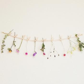 花や植物のドライフラワーをばらしてガーランドにすると雰囲気がだいぶ変わって見えますね。お部屋のいいアクセントになりそうです。