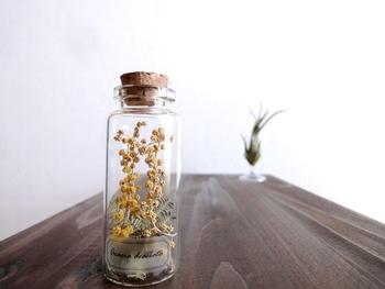ガラス瓶に詰めると一段と特別感が出てきます。宝物のように大切にしたくなりますね。