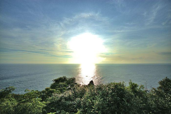 静岡県の東部に位置し、比較的温暖な気候と、海や山などの豊富な自然に恵まれている【伊豆半島】。美味しい山海の幸がたくさんあるのでグルメ目的で訪れるのもよいですが、体を癒すスポットとしても魅力たっぷり。伊豆半島は大きく分けると「東伊豆」、「中伊豆」、「西伊豆」、「南伊豆」の4エリアによって構成されていますが、すべてのエリアで天然温泉を楽しめる、日本有数の温泉地なんです。