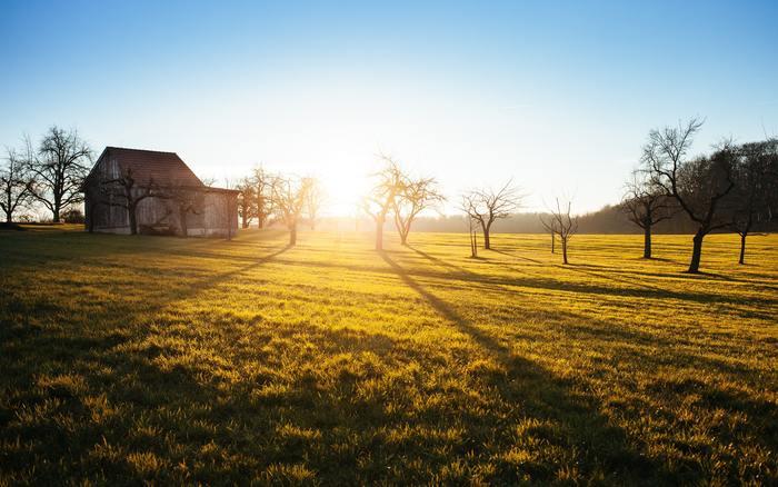朝の光はとても大事なんです。朝陽を浴びることで体内時計のズレがリセットされ活動モードに。さぁ、元気よく一日をスタートさせましょう。
