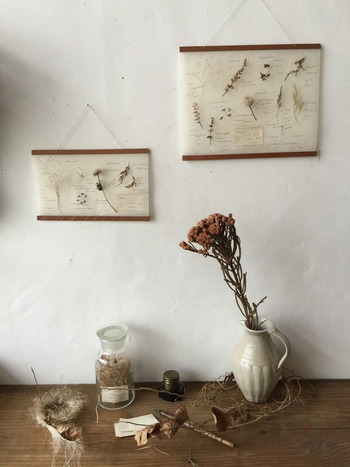 外国の古い植物図鑑の1ページを思わせる壁掛け標本は、やはりアンティークやボタニカルなインテリアとの組み合わせが好相性です。無造作に並べてあるように見えて、そこにはもう静かで洗練された空間が出来上がっています。